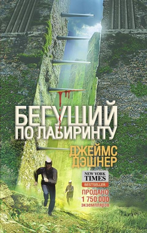 Джеймс Дэшнер - Бегущий по Лабиринту (Бегущий по Лабиринту - 1)